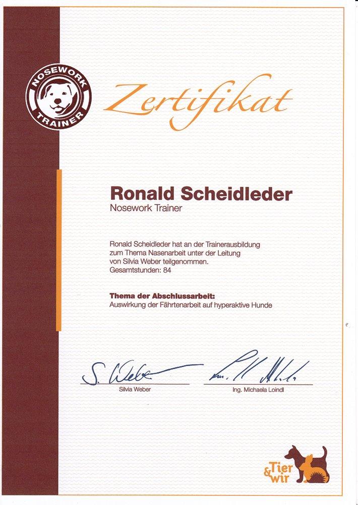 Noseworker Zertifikat